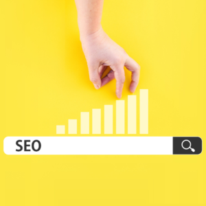 Search-engine-optimization-services